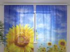 Šifoon-fotokardin Sunflower 240x220 cm ED-100036