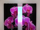 Poolpimendav kardin Orchid twig 240x220 cm ED-100454