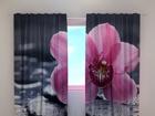Полузатемняющая штора Orchid tenderness 240x220 cm ED-100463
