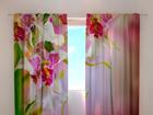 Полузатемняющая штора Mottle orchids 1, 240x220 cm ED-100506