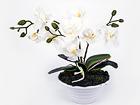 Искусственный цветок Белая орхидея h30 cm EV-106494