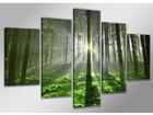 Viieosaline seinapilt Forrest 200x100 cm
