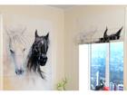 Pimendav roomakardin African Horses 1 120x140 cm
