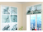 Poolläbipaistev roomakardin Dandelion 1 60x60 cm
