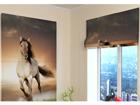Pimentävä laskosverho HORSE 120x140 cm