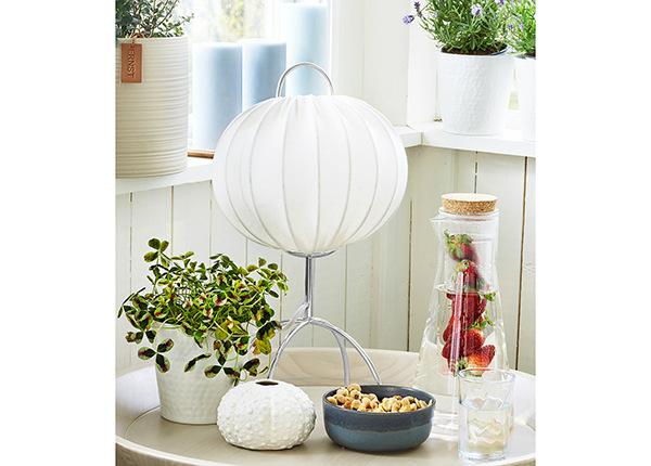 Настольная лампа Scandi AA-109315