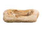 Pesuallas kivettynyttä puuta GM-110965
