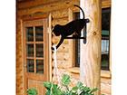Amplihoidja Kass