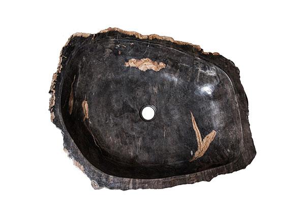 Pesuallas kivettynyttä puuta GM-124520