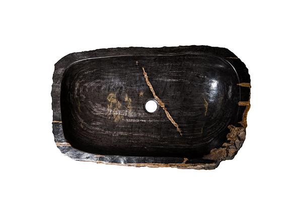 Pesuallas kivettynyttä puuta GM-124524