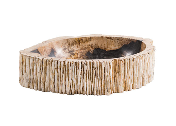 Pesuallas kivettynyttä puuta GM-124532