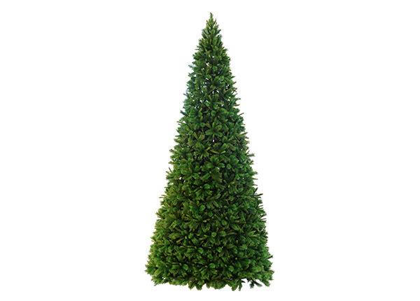 Искусственная елка Colorado 5 m AA-124959