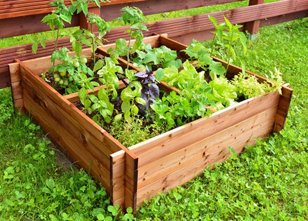Ящик для выращивания растений 100x100 см 4 сектора
