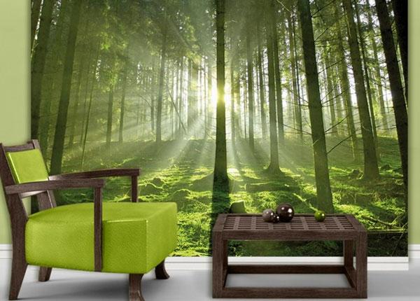 Fototapeet Fairytale Forest 280x200 cm ED-125963