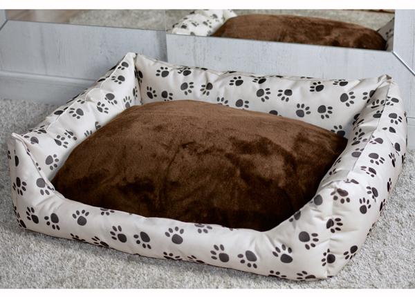 Koiranpeti PAW S1