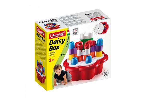 Kujundite karp Daisy