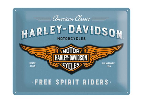 Металлический постер в ретро-стиле Harley-Davidson logo 30x40 cm SG-129680