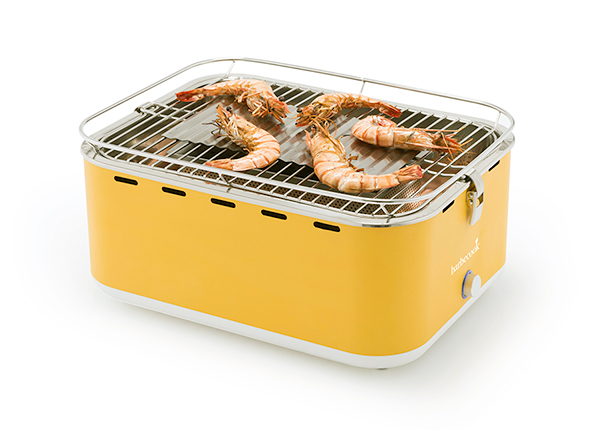 Угольный гриль Barbecook Carlo