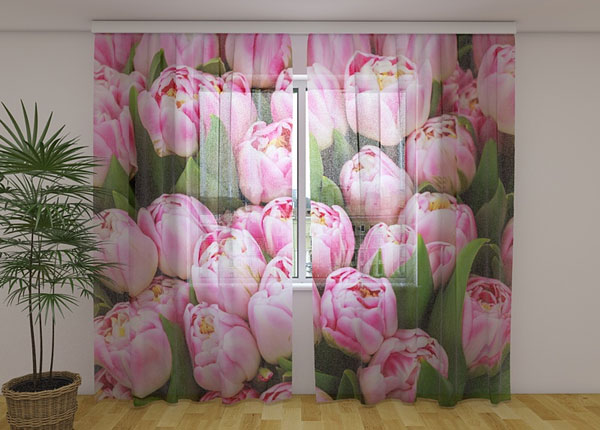 Šifoon-fotokardin Marvelous tulips 240x220 cm ED-131458