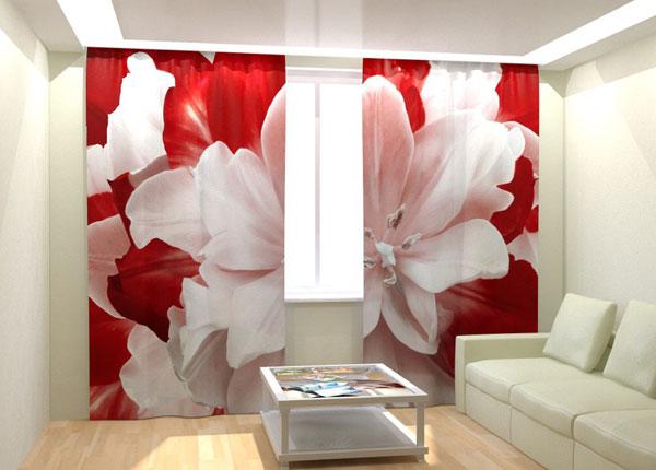 Kuvaverhot RED WHITE TULIP 300x260 cm AÄ-133030