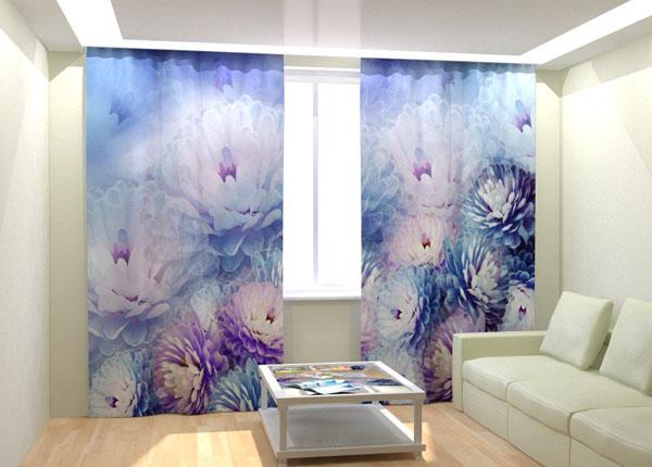 Fotokardinad Tender Blue Flower 300x260 cm AÄ-133044