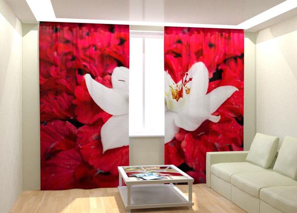 """Фотошторы """"White Flower on Red"""" 300x260 см AÄ-133052"""