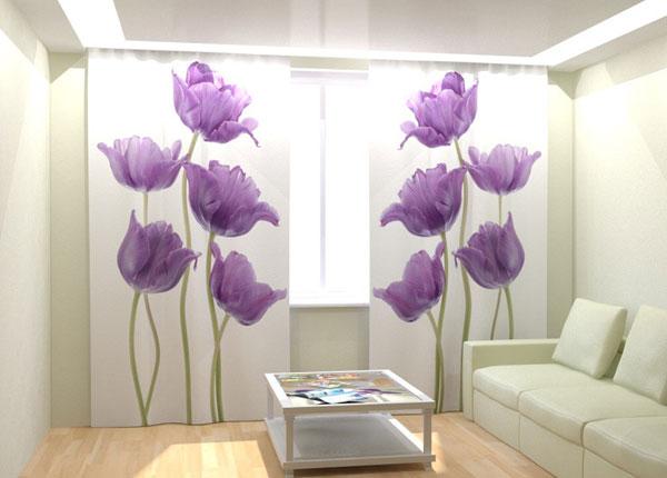 Fotokardinad Purple Tulips 300x260 cm AÄ-133397