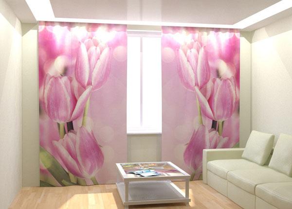 Fotokardinad Pink Tulips 300x260 cm AÄ-133401