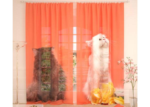 Tüllkardinad Cats 290x260 cm AÄ-134083