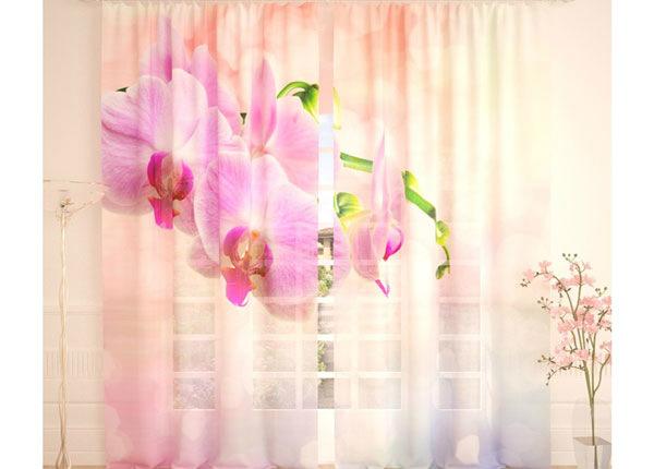 Tüllkardinad Pink Orchid 290x260 cm AÄ-134298