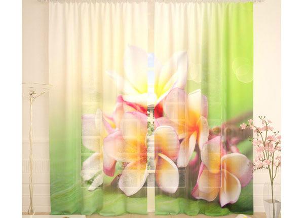 Tüllkardinad Soft Bouquet 290x260 cm AÄ-134299