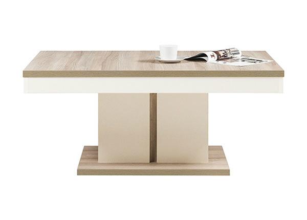 Журнальный стол 120x72 cm TF-135035