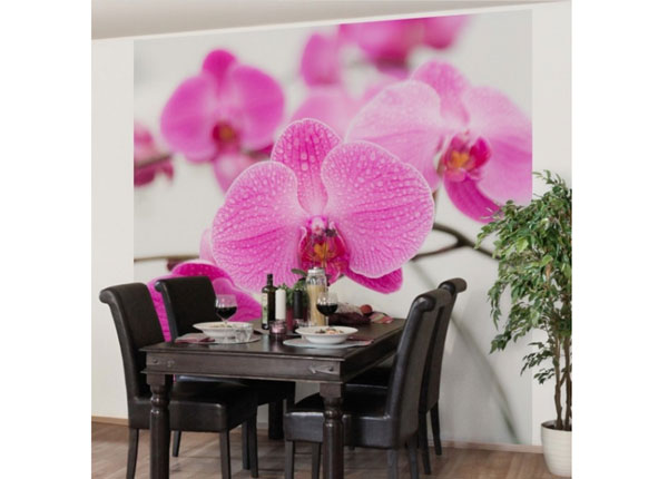 Fliis fototapeet Close up orchid
