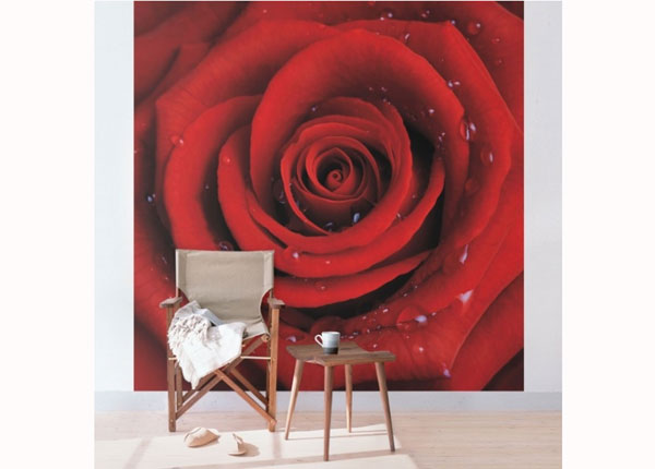 Fliis fototapeet Red rose with water drops