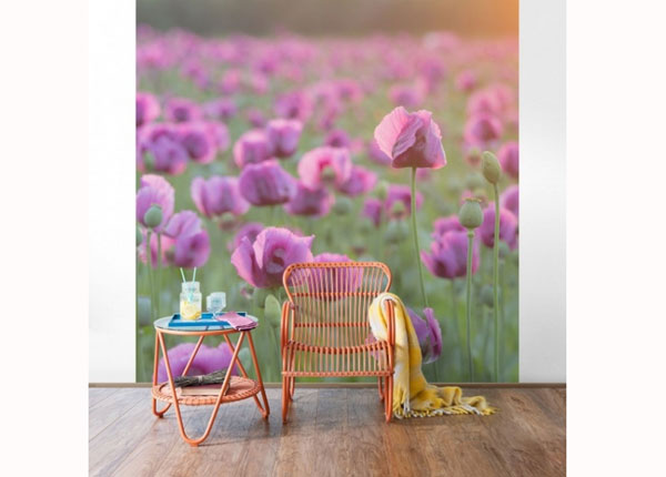 Fliis fototapeet Violet poppy flowers meadow in spring