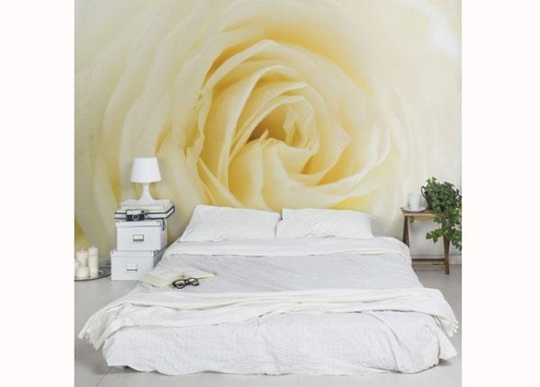 Fleece-kuvatapetti WHITE ROSE