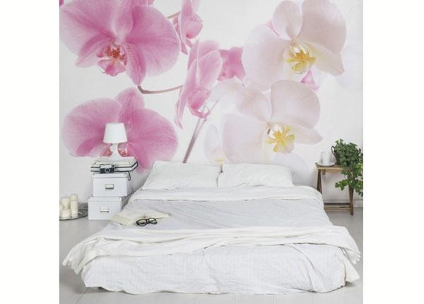 Fliis fototapeet Delicate Orchids