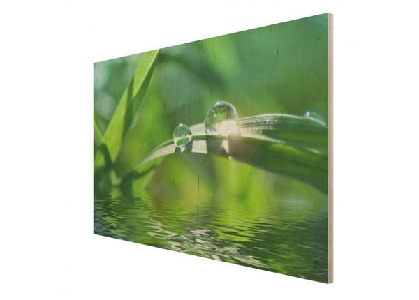 Seinapilt puidul Green Ambiance II