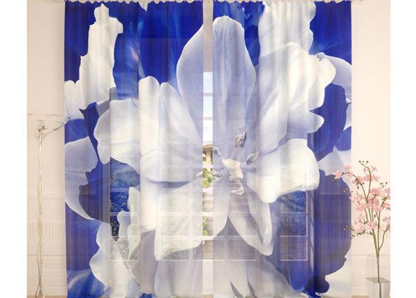 Tüllkardinad Blue White Tulip 290x260 cm AÄ-138217