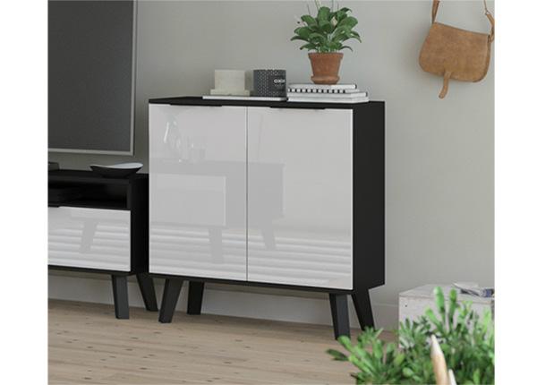 Lipasto TF-138397