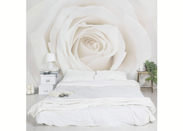 Fliis fototapeet Pretty White Rose