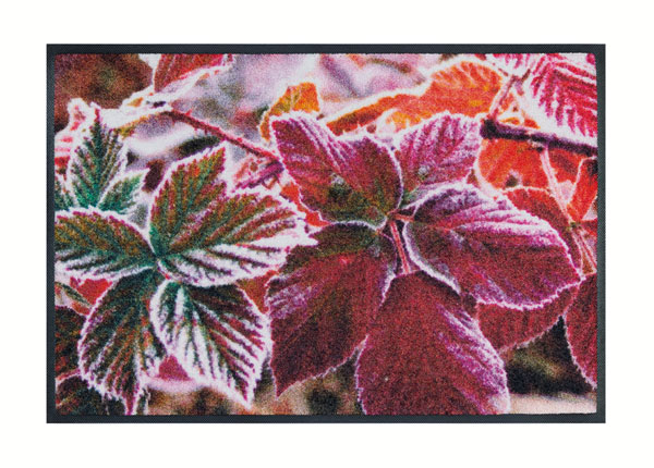 Matto FROZEN LEAVES 50x75 cm A5-138661