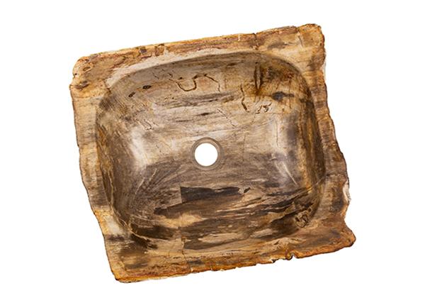 Pesuallas kivettynyttä puuta GM-139977
