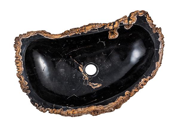 Pesuallas kivettynyttä puuta GM-139986