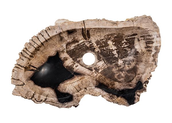 Pesuallas kivettynyttä puuta GM-140014
