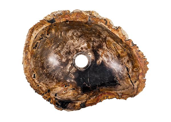 Pesuallas kivettynyttä puuta GM-140025