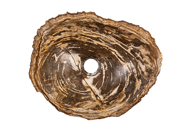 Pesuallas kivettynyttä puuta GM-140028