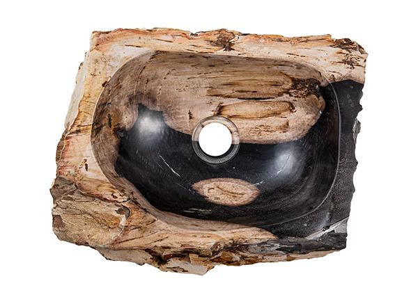 Pesuallas kivettynyttä puuta GM-140029