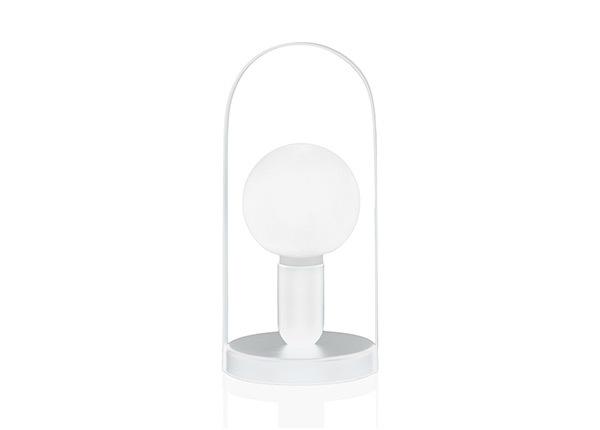 Настольная лампа Carrie AA-141386