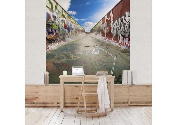 Fliis fototapeet Skate Graffiti ED-143351